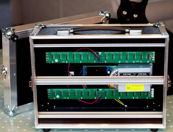 Cat with Doepfer modular case