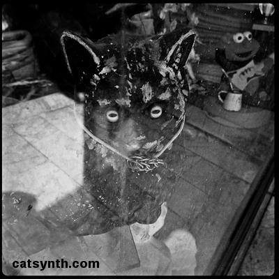 storefront_cat_c