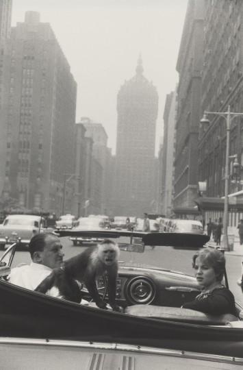 09_sfmoma_winogrand_parkavenuenewyork_1956