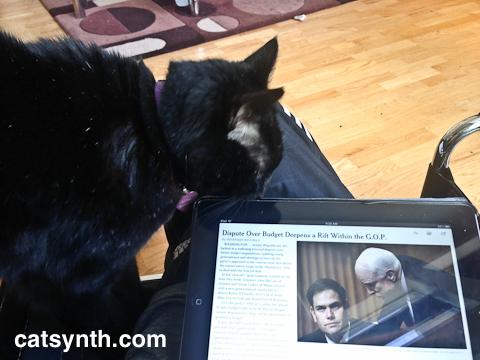 Luna with New York Times (iPad)