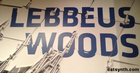 lebbeus_woods_c