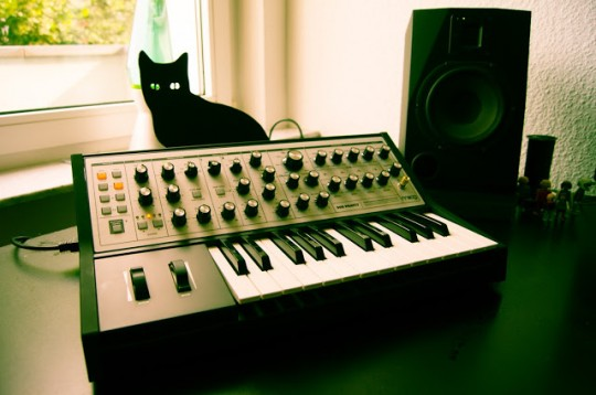steel cat with moog sub phatty